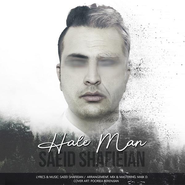 Saeid Shafieian – Hale Man