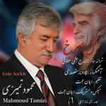 دانلود آهنگ جدید محمود تمیزی بنام گل سرخ