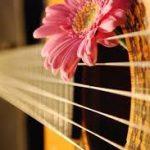 دانلود آهنگ جدید محمدرضا ساعی به نام مال منه قلبت