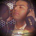 دانلود آهنگ جدید محمد احمدی به نام تویی محبوبه دلم