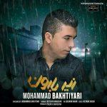 دانلود آهنگ جدید محمد بختیاری بنام زیر بارون