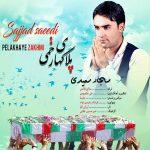 دانلود اهنگ جدید سجاد سعیدی بنام پلاک های زخمی