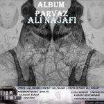 دانلود آلبوم جدید علی نجفی بنام پرواز