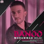 دانلود آهنگ جدید محمد ملائی به نام بانو