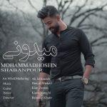 دانلود آهنگ جدید محمد حسین شعبان پور به نام میدونی