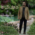 دانلود اهنگ جدید محمد عیدی بنام در میان گل ها