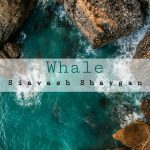 دانلود اهنگ جدید سیاوش شایان بنام نهنگ
