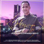 دانلود اهنگ جدید مصطفی محمدی بیداد بنام هی تو