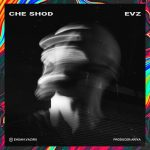 دانلود آهنگ جدید EVZ به نام چه شد