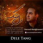 دانلود اهنگ جدید داوود ابوالقاسمی بنام دل تنگ