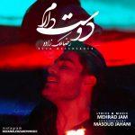 دانلود موزیک ویدیو جدید رضا ملک زاده بنام دوست دارم