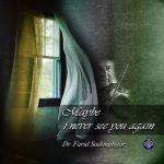 دانلود آهنگ جدید دکتر فرید صدوقی فر به نام شاید تورا دیگر نبینم
