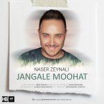 دانلود آهنگ جدید ناصر زینلی به نام جنگل موهات