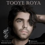 دانلود اهنگ جدید محمدرضا کریمی بنام توی رویا