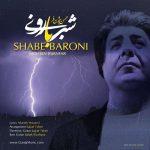دانلود اهنگ جدید محسن بیژن فر بنام شب بارونی