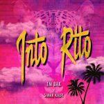 دانلود آهنگ جدید تی ام بکس و Simar Kaur به نام اینتو ریتو